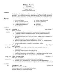 chief accountant accountant resume samples