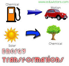 cbse papers questions answers mcq cbse class 9 science