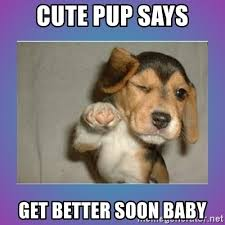 Funny Get Well Soon Memes - cute pup says get better soon baby get well soon pup meme