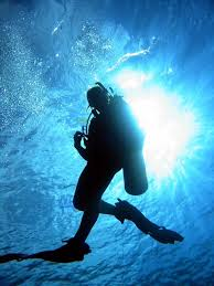 Arkansas snorkeling images Learn to scuba dive scuba archery center jpg