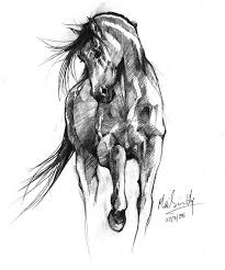 best 25 horse sketch ideas on pinterest horse paintings