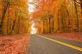 fall color tour roads peak dates fall colors