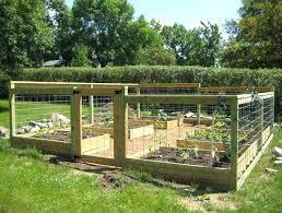 Diy Garden Fence Ideas Garden Fence Plans Garden Fence Ideas Gardening Garden Fencing