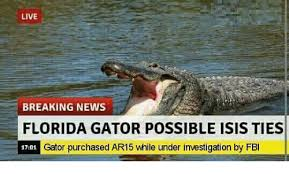 Funny Florida Gator Memes - 25 best memes about florida gators florida gators memes