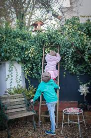 big garden birdwatch u2014 homegrown learners