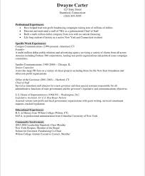 Chief Of Staff Resume Sample by Non Profit Marketer Free Resume Samples Blue Sky Resumes