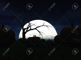 scary halloween photo background garden filled with scary halloween pumpkins at night a big moon