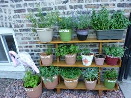 Ideas For Herb Garden Pallet Wall Herb Garden Ideas