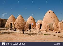 syrian desert syria desert badiyat al sham farm sheep culture bedouin bedouins