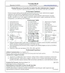 Resume Writing Services Memphis Tn Resume Professional Resume Writing Services Nyc Service Package