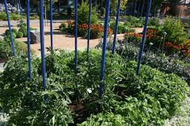 metal flower garden stakes heart metal garden stakes using garden stakes for your plants