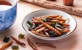 insectes dans la cuisine manger des insectes comestibles pour protéger la planète on a