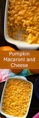 1000 ideas about pumpkin mac and cheese on pinterest macaroni