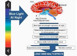 harmful effects of led lights light exposure at night circadian australia