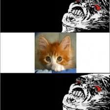 Puppy Eyes Meme - soon a classic meme gallery kitten puppy litle pups