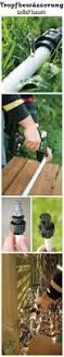 Gartensitzplatz Selber Bauen 25 Best Ideas About Heckenpflanzen Direkt On Pinterest