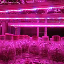 red and blue led grow lights wholesale 5m 5050 led grow light strip growlight 12v red blue