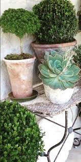 316 best pots u0026 planters images on pinterest plants pots and