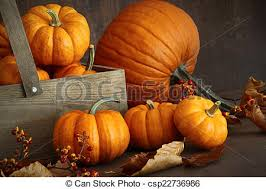 small pumpkins small pumpkins with wooden box on table pictures search