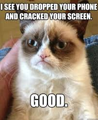 Drop Phone Meme - i see you dropped your phone and cracked your screen good grumpy