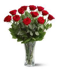 Long Stem Rose Vase One Dozen Long Stem Roses Vased And Delivered