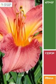 Schlafzimmerm El Rot Die Besten 25 Orange Farbpaletten Ideen Auf Pinterest