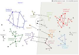 The Interplay Of Physical And Sam Payne Integrative Omics