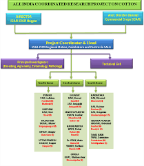 institutional structure of cotton research in india intechopen