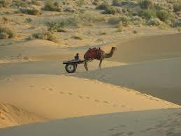 thar desert the desert safari and gala dinner amidst the great indian desert