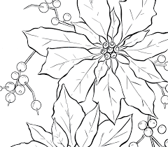 poinsettia line art christmas poinsettia patterns and