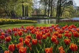 keukenhof the most beautiful spring garden in the world picture
