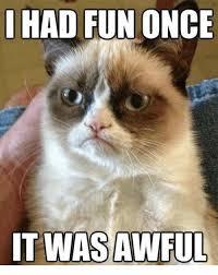 Grumpy Cat Meme I Had Fun Once - i had fun once itwas awful grumpy cat meme on me me