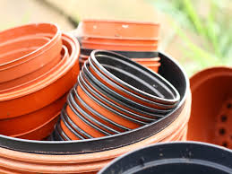 8 Urban Gardening Tips