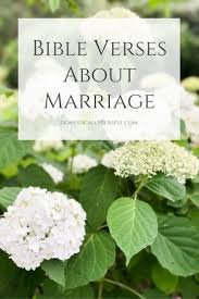 Bible Quotes About Loving Others by Best 10 Bible Verses About Marriage Ideas On Pinterest Im