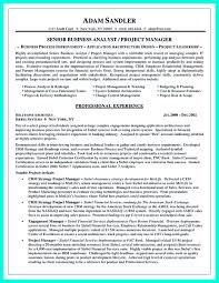 Programming Resume Examples by Resume Sample For Computer Programmer Free Resume Example And