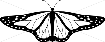 black and white butterfly butterfly clipart