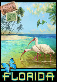 Florida Travel Pictures images Vintage florida travel poster with ibis painting by r christopher vest jpg