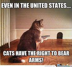 Right To Bear Arms Meme - right to bear arms by andrewlye meme center
