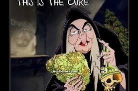 Snow White Meme - snow white weed memes weed memes