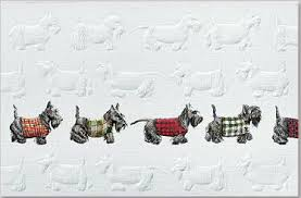 the best scottish terrier cards scottish terrier and