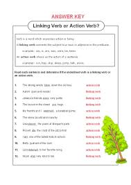 linking and action verbs worksheet worksheets