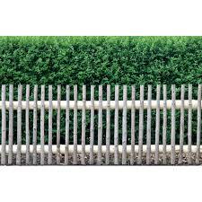 28 Ideen Fur Terrassengestaltung Dach 10510020170215 Sichtschutz Fur Terrasse Bilder U2013 Filout Com