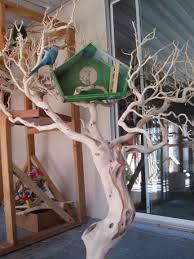 manzanita tree stand by prego dalliance sanctuary pds tree