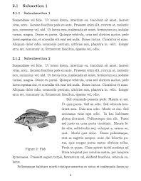 latex templates essays