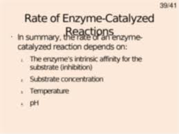 enzymes are very specific in which reactions they catalyze ie