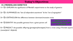 tuesday march 3rd u2013week 9 topic genetics obj 1 5 do now