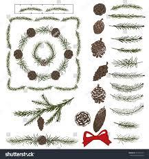 spruce green branchespinecones brusheschristmas treegreen