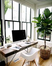 plante bureau bureau ambiance decoration de bureau photo stunning decoration