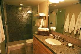guest bathroom ideas decor fair guest bathrooms guest bathroom traditional bathroom san