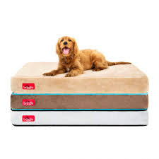 Costco Memory Foam Dog Bed Bedroom Inspiring Dog Beds Bed Bedding Orthopedic Extra Large